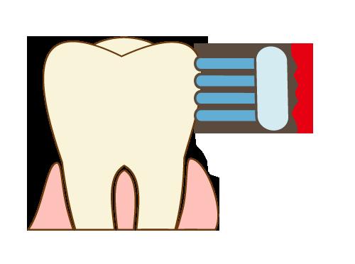 歯ブラシの当て方